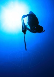 plongée chasse sous marine