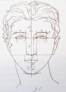 anatomie nez esthétique
