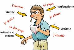 symptomes de la rhinite allergique allergie nez