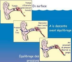 physiologie pression oreilles plongée